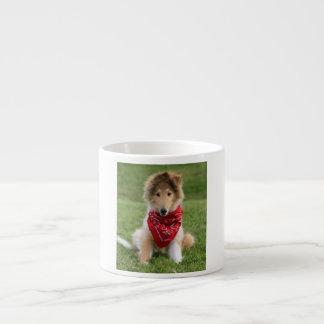 Rough collie puppy dog cute beautiful photo 6 oz ceramic espresso cup