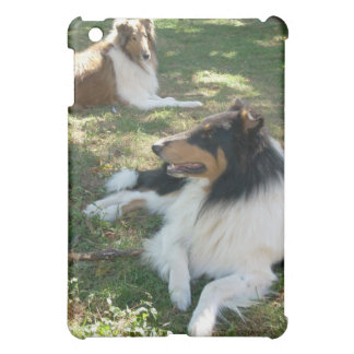 Rough Collies iPad case