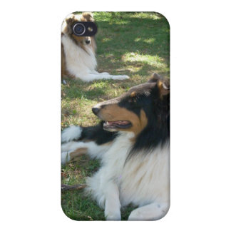 Rough Collies iPhone4 case iPhone 4/4S Cases