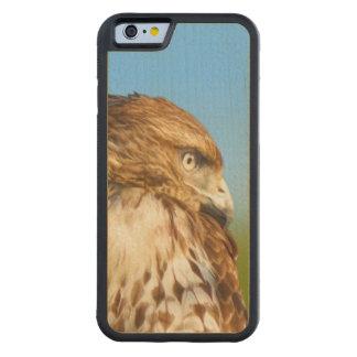 Rough-legged Hawk Bird Maple iPhone 6 Bumper Case