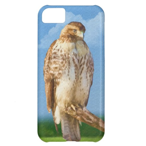 Rough-legged Hawk iPhone 5 Case