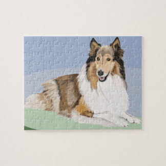 Rough, Long Haired Collie Jigsaw Puzzle