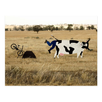 Rough Riding Postcard