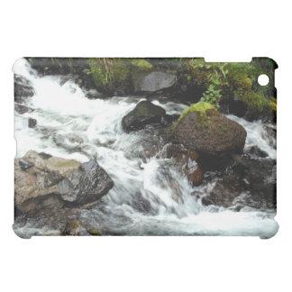 Rough River iPad Mini Cases