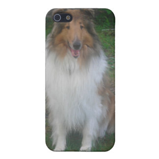 Rough (sable) Collie iPhone4 case Case For iPhone 5/5S