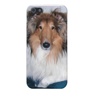 Rough Sable Collie iPhone 5c Case