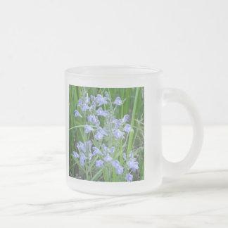 Rough Skullcap Scutellaria integrifolia Coffee Mugs