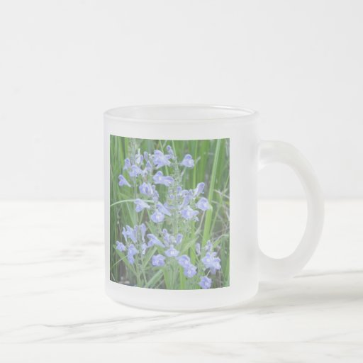 Rough Skullcap, Scutellaria integrifolia Coffee Mugs