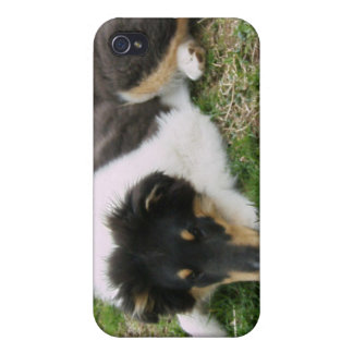 Rough Tri Collie Puppy Cases For iPhone 4