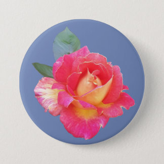 Round Badge with Rose on Blue Background