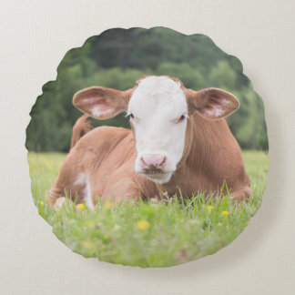 Round Cow Pillow