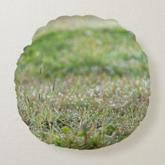 Round cushion Bleaches on grass