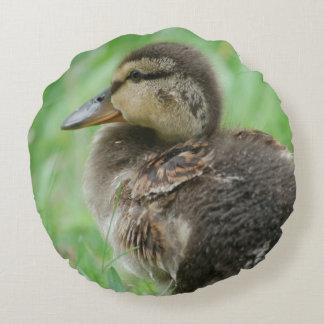 Round cushion duck chicken Duckling v. Jean l.