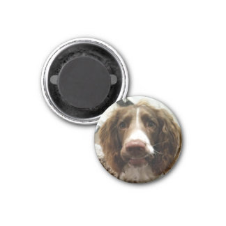 round fridge magnet