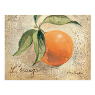 Round Shiny Orange Fruit Postcards