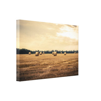 Round straw bales on a rural field canvas print