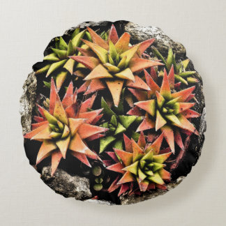 ROUND THROW PILLOW/ LAYERED STAR-SHAPED SUCCULENT ROUND CUSHION