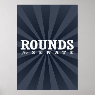 ROUNDS FOR SENATE 2014 PRINT