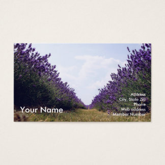 Row of Lavender Business Card