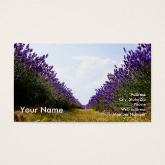 Row of Lavender Business Card_A Business Card