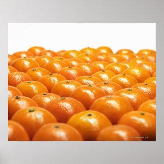 Row of oranges poster