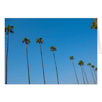 Row of Palm Trees Card