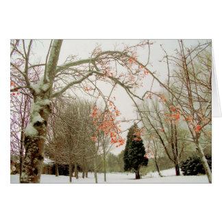 Rowan berries against the snow greeting card