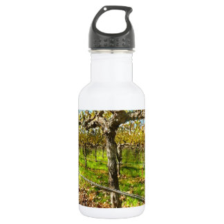 Rows of Grapevines in Napa Valley California 532 Ml Water Bottle
