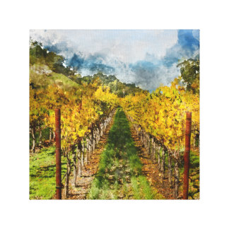 Rows of Grapevines in Napa Valley California Canvas Print
