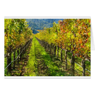 Rows of Grapevines in Napa Valley California Card