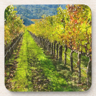 Rows of Grapevines in Napa Valley California Coaster
