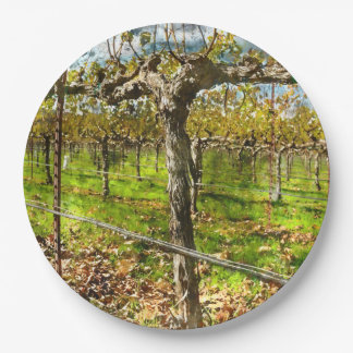 Rows of Grapevines in Napa Valley California Paper Plate