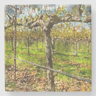 Rows of Grapevines in Napa Valley California Stone Coaster