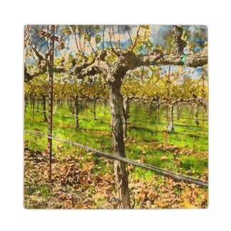 Rows of Grapevines in Napa Valley California Wood Coaster