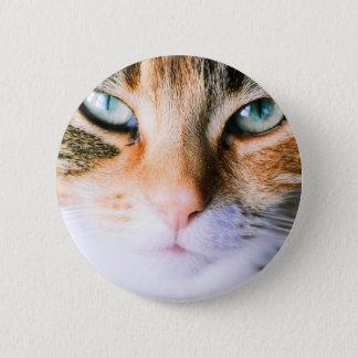 Roxie the cat 6 cm round badge