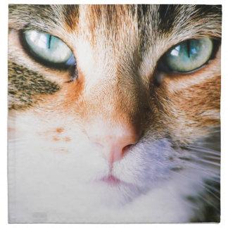 Roxie the cat napkin