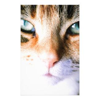 Roxie the cat stationery