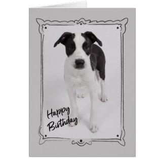 Roxy Happy Birthday Card