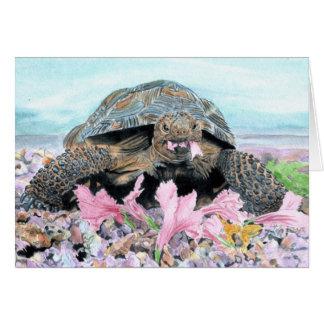 Roxy the Turtle Greeting Card
