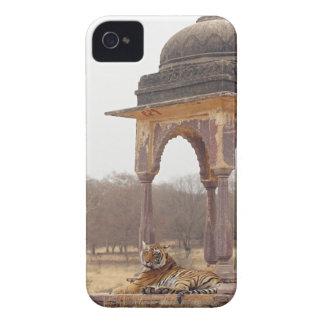Royal Bengal Tiger at the cenotaph, Ranthambhor iPhone 4 Cases