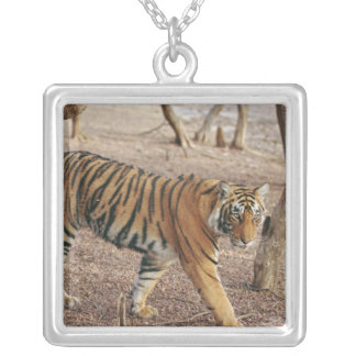 Royal Bengal Tiger coming out of woodland, Square Pendant Necklace