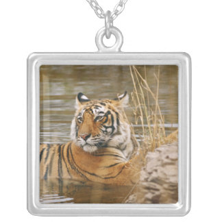 Royal Bengal Tiger in the forest pond, Square Pendant Necklace
