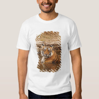 Royal Bengal Tiger in the jungle pond, 2 Tshirt