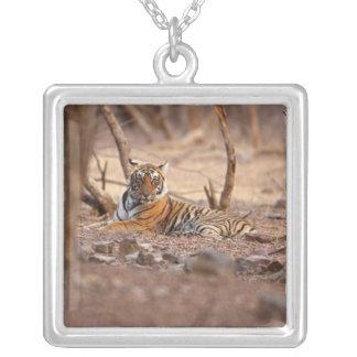 Royal Bengal Tiger, Ranthambhor National Park, Square Pendant Necklace