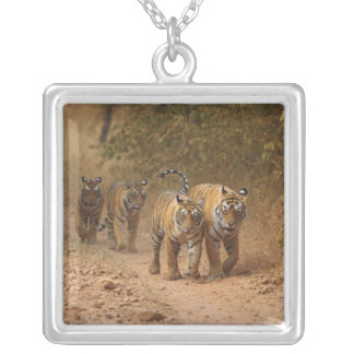 Royal Bengal Tigers on the move, Ranthambhor Square Pendant Necklace