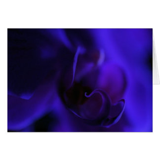 Royal Blue Orchid Blank Card, Exotic Floral Card