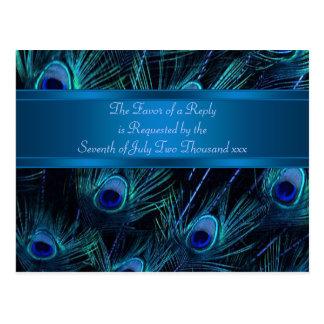Royal Blue Purple Peacock Feathers Wedding Postcard