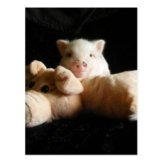 Royal Pig Postcard