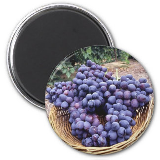 Royal Purple Grapes 6 Cm Round Magnet