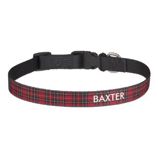 Royal Stewart Tartan Pet Collar